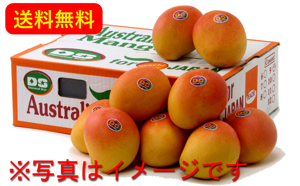 Australian Mango 3.3kg (6-11 mangoes : Japan Delivery Only)